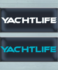 "Decal 12"" White or Aqua"